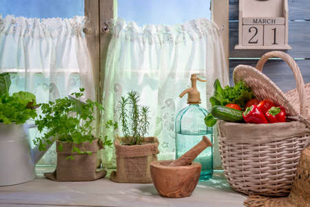 lite food: Fresh herbs near white window