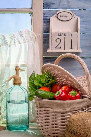 lite food: Fresh vegetables harvested in spring day