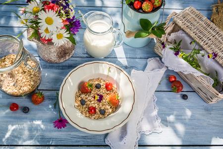 breakfast garden: Preparations for breakfast in the garden