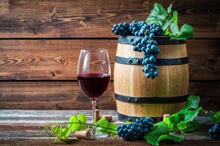 Pohár vörösbort egy fa pince