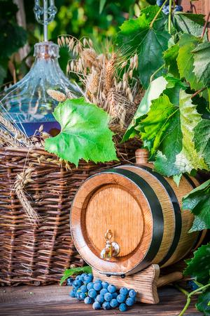 demijohn: Barrel and demijohn full of red wine