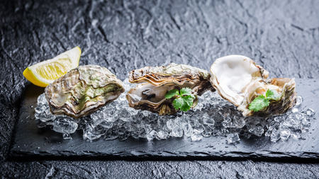 Tasty oysters on ice