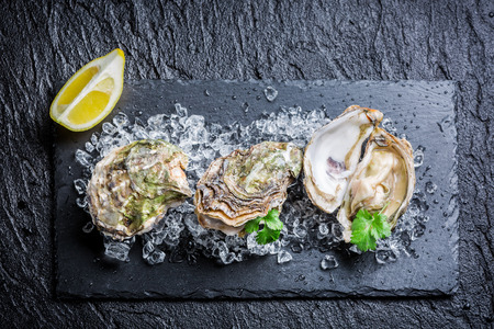 oyster: Tasty oysters on crushed ice