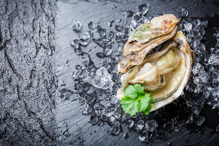 Delicious oyster in shell on ice