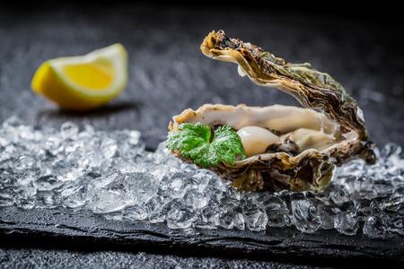 Nyfångade ostron på krossad is
