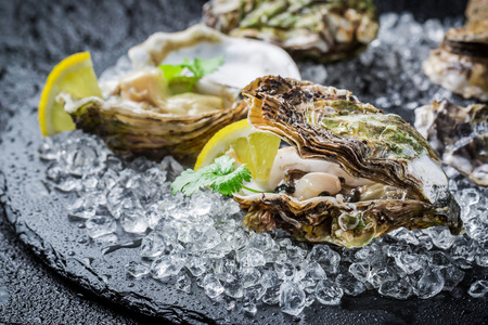 Tasty oysters on ice with lemon