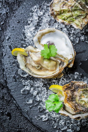oyster shell: Tasty oysters on crushed ice with lemon