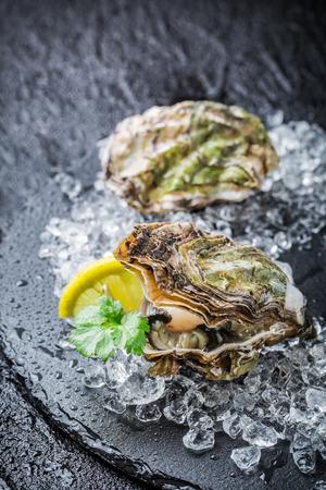 Lekkere oesters op gemalen ijs klaar om te eten Stockfoto
