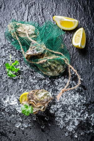 Delicious oysters on ice with lemon photo