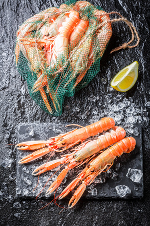 ice crushed: Verse scampi op crushed ijs