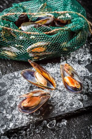 crushed ice: Fresh mussels on crushed ice