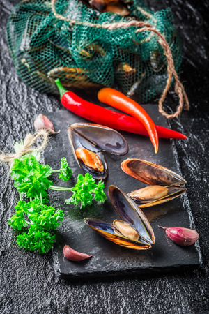 Freshly caught mussels on crushed ice Stock Photo