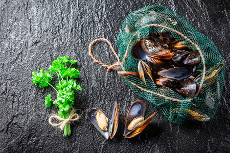 Fresh mussels on ice with ingredients Stockfoto