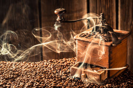 attar: roasted coffee seeds