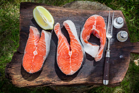 Preparation fresh salmon with dill and lemon photo