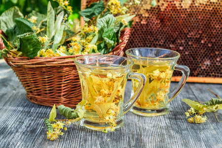 Summer lime tea with honey served in the garden photo