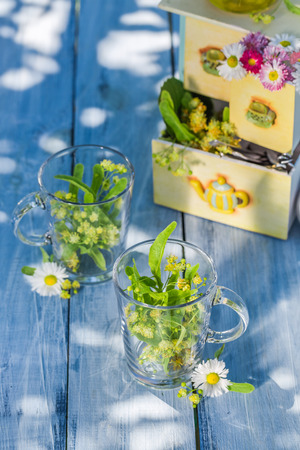 herbal background: Healthy tea with honey with in sunny day