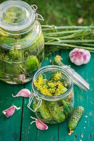 gherkins: Fresh gherkins in jars Stock Photo