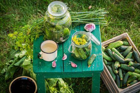 gherkins: Homemade gherkins in the jars