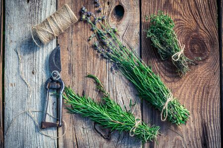 pruning scissors: Healthy herbs on old wooden table