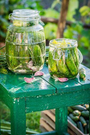 gherkins: Ingredients for gherkins in jars