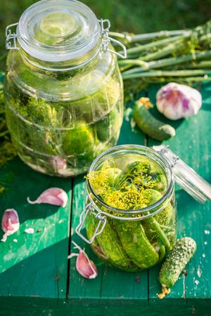 gherkins: Ingredients for gherkins in garden