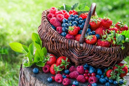 canastas con frutas: bayas sanas en día soleado Foto de archivo