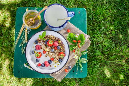 wild oats: Healthy breakfast with berry fruits and yogurt