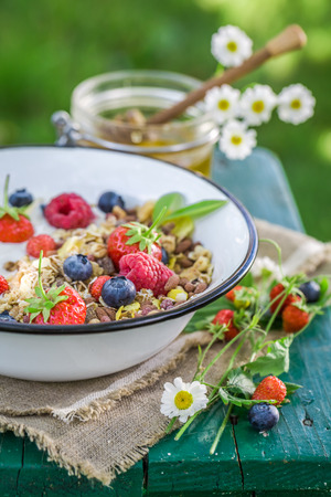 breakfast garden: Tasty breakfast with yogurt and berry fruits in garden Stock Photo
