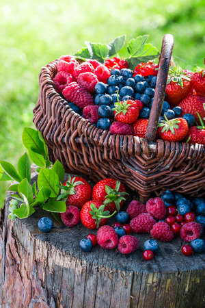 fruits in a basket: Various berry fruits in basket Stock Photo