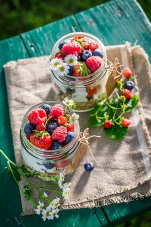 wild oats: Tasty muesli with berry fruits and yogurt in garden Stock Photo