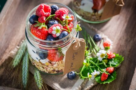 wild oats: Healthy granola with yogurt and berry fruits in sunny day Stock Photo