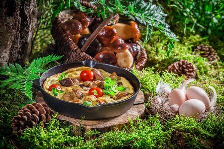scrambled: Homemade scrambled eggs in forest at sunrise