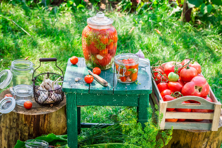 Production of canned tomatoes in summer Stok Fotoğraf
