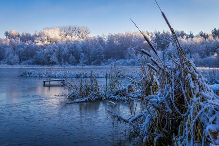 winter sunrise: Sunrise on winter lake covered with snow