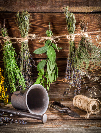 witchdoctor: Therapeutic herbs for tincture as natural medicine Stock Photo