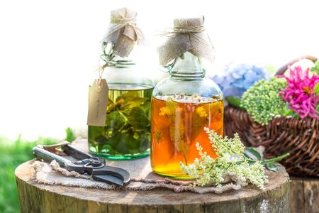 witchdoctor: Healing herbs in bottles as an alternative cure