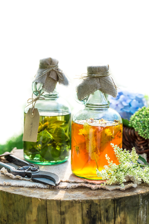 witchdoctor: Healing herbs in bottles as natural medicine