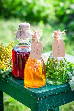 witchdoctor: Healing herbs in bottles as homemade cure
