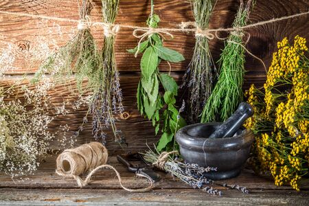 witchdoctor: Aromatic herbs for tincture as natural medicine