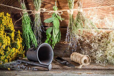 Therapeutic herbs for tincture as alternative medicine Banco de Imagens