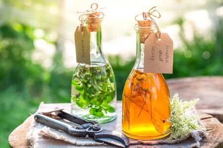 tincture: Healing tincture in bottles as homemade cure