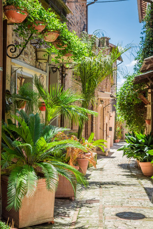 the tuscany: Wonderful decorated street in small town in Italy, Umbria