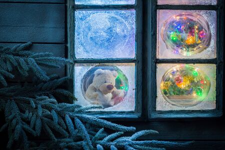 frost winter: Teddy bear in frozen window for Christmas with lights and tree