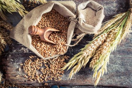Hälsosamma ingredienser för rullar och bröd med hela korn Stockfoto