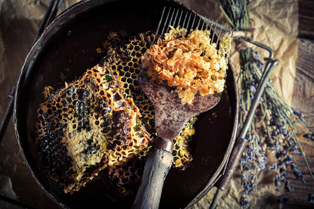 apiarist: Tools for beekeeping with honeycomb and lavender Stock Photo