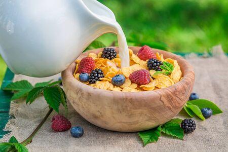 latte fresco: Cornflakes saporiti con frutti di bosco e latte in giardino