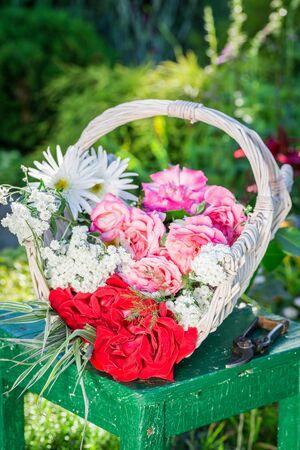 pruning scissors: Wonderful flowers in basket in garden Stock Photo