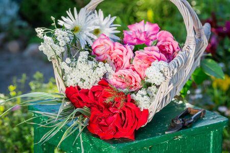 pruning scissors: Wonderful flowers in basket in sunny garden