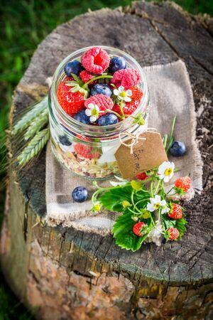 wild oats: Fresh muesli with berry fruits and yogurt in garden